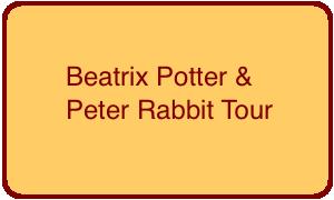 beatrix-potter-peter-rabbit-button