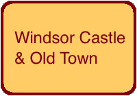 windsor-button